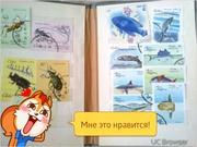 марки СССР МОНГОЛИЯ КУБА ВЕНГРИЯ ПОЛЬША ЧЕХОСЛОВАКИЯ Ит.д
